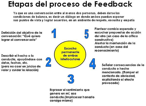 figura2-etapas-del-proceso-de-feedback