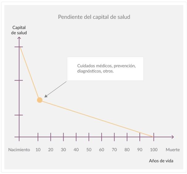 gráfico 2_decisión